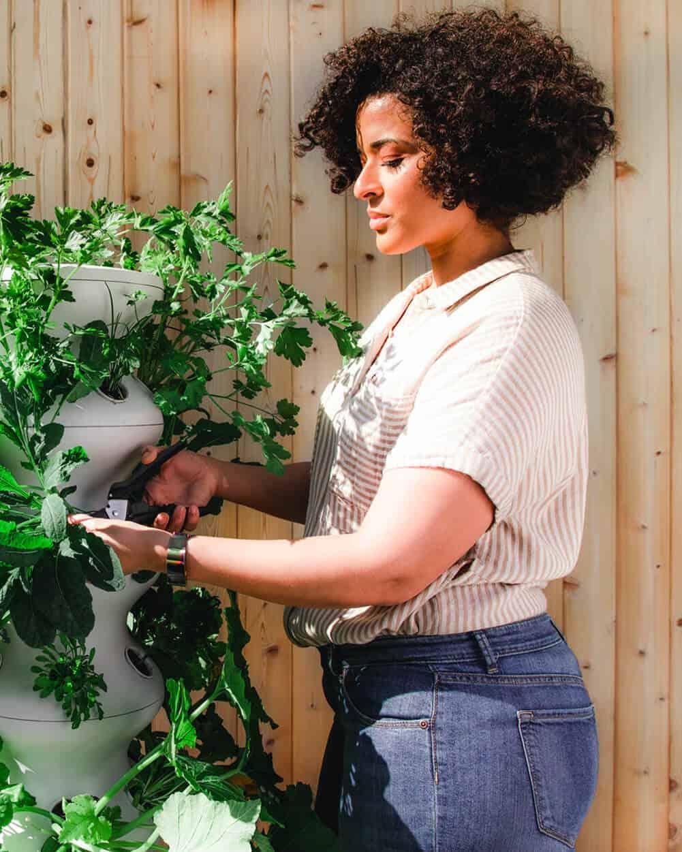 Woman harvesting her garden outdoors